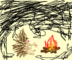 Porcupine sits by campfire