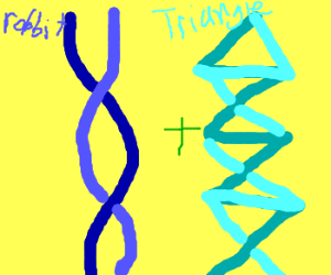 Rabbit DNA has been spliced with Triangle DNA.
