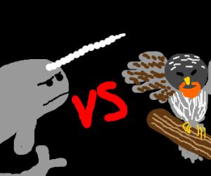 Narwhal vs orange-bearded Uni-owl