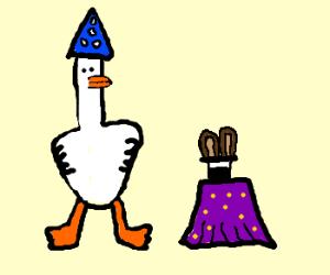 Trick Duck
