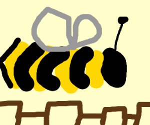 Holy baloney, that bee is enormous!