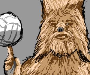 Wookies playing beach ball top-gun style