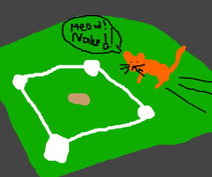 A cat goes streaking at a baseball game