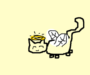 Angel cat with bee wings