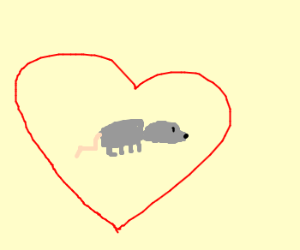 Rat in love