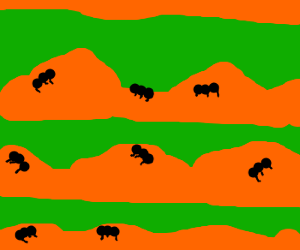 Land of ant hills