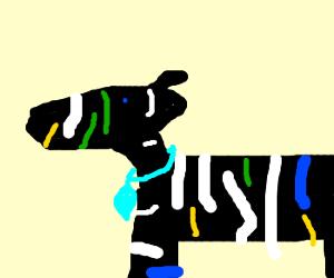 SWAG Zebra