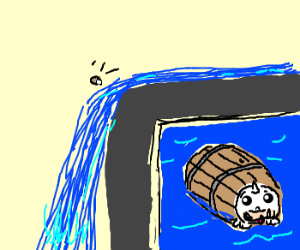 Seal going over the falls in barrel