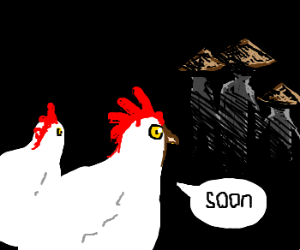 Roosters follow paranoid Asian family