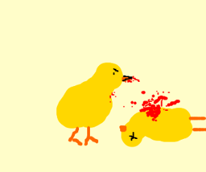 a chick killing another