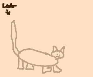Simple cat.