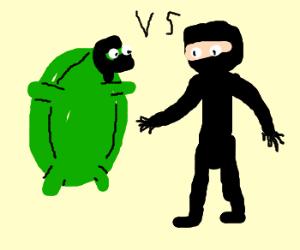 Ninja Turtle vs Ninja Human