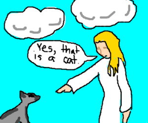 "Angel confirms, ""Yes that is a cat"""