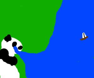 A panda sucks the ocean into its eyes.