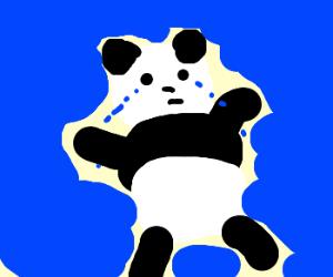 panda cries a sea