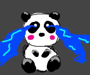 Cute panda crying.