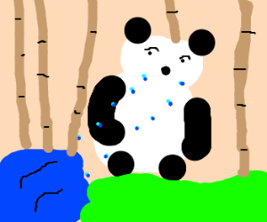 panda is crying a river