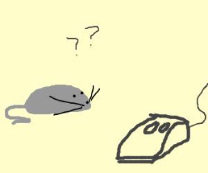 Live Mouse, meet Computer Mouse