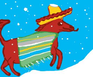 Mexican riding horse through snowstorm
