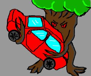 tree attacks car