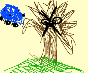 Tree Hugging a Car Angrily
