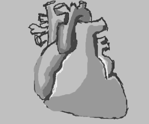 Drawing of the drawing of a heart.