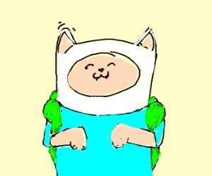 Finn turns into a cat