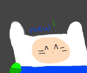 Finn the Cat