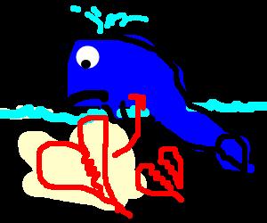 Heartbroken Whale