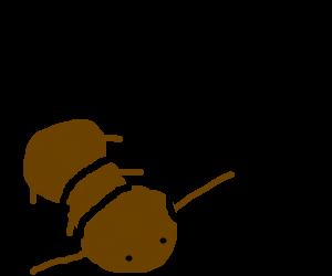 antenaes