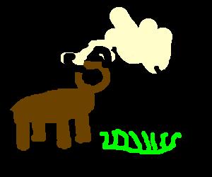 Buffalo buffalo Buffalo buffalo buffalo buffalo