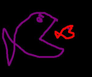 Fish becomes fish food