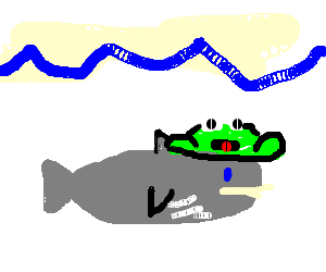 A frog on a whale