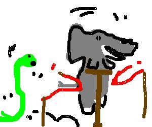 elephant on stick beats snakes in race