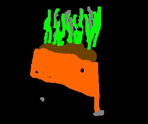 dung cart
