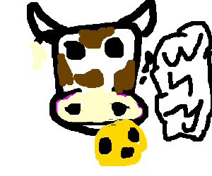 Cow eats cheese, but secretly wonders why.