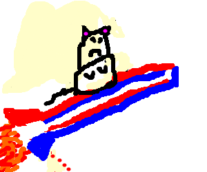American rocket peeing blood with angry cat