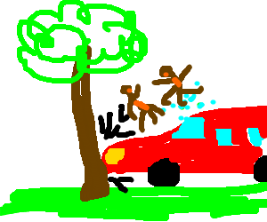 car crash with monkeys