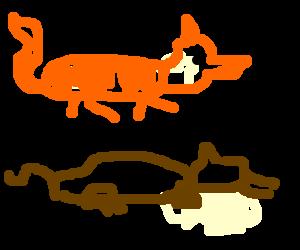 Fox jumps over a sleeping dog.