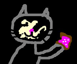 Cat eats poptart