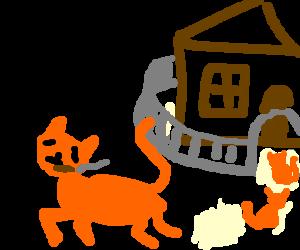pothead cat skipping school