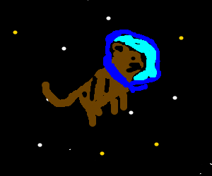 Cat floating through space