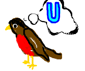 Bird thinking of U