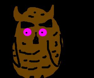Owl smokes weed
