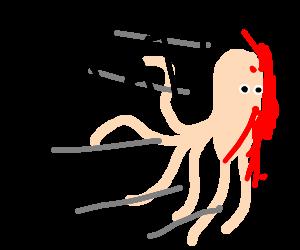 Gelly octopus goes splat