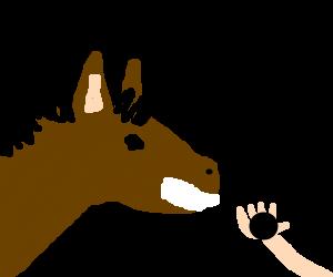 """Would you like a bonbon, Swag Horse?"""