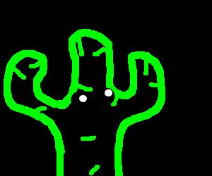 Cactus gasping at Fata Morgana
