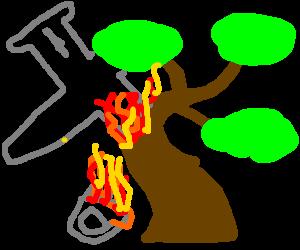 plane crashes into bonsai tree