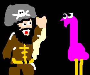 pirate waving at pink flamingo