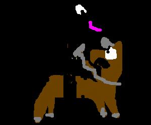 Horse Rides a Horse